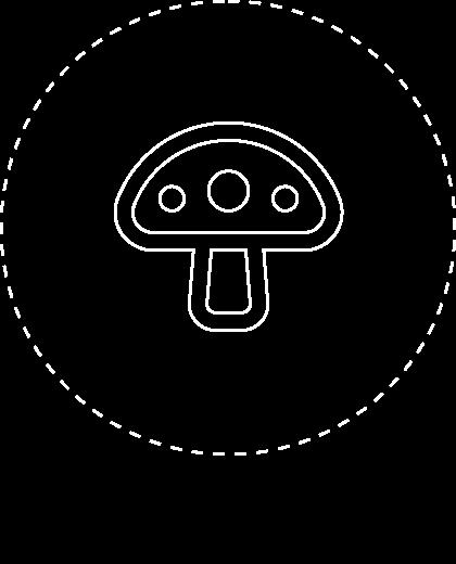 Diag fungi passive@2x