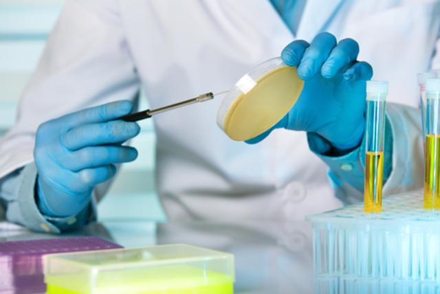 Посев мочи – важнейший анализ при диагностике простатита