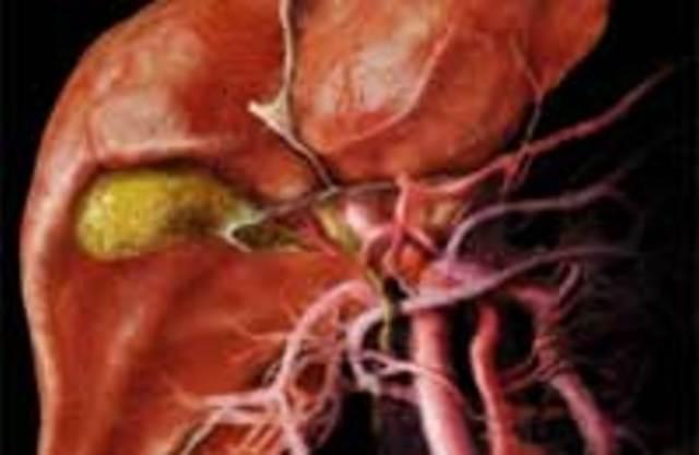 Дискинезия желчевыводящих путей диета.