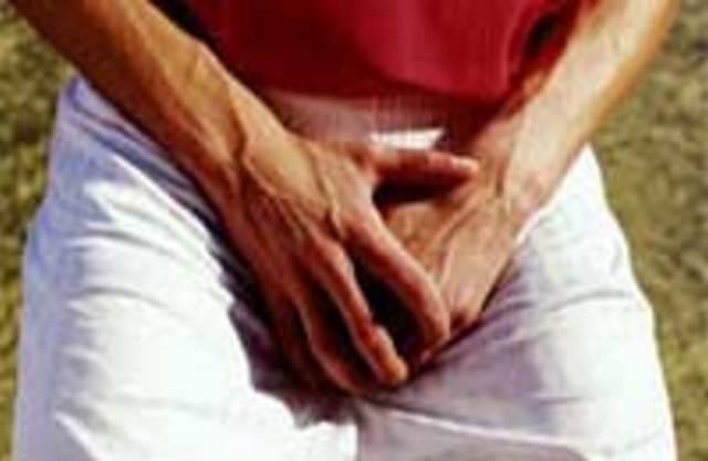 чолвічі статеві органи фото