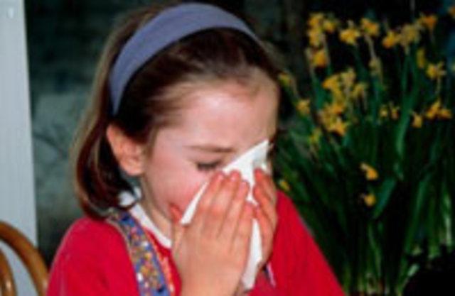 Аллергия: как свести риск обострения к минимуму