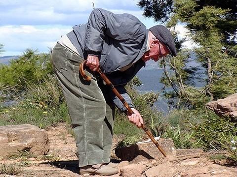 Одна минута интенсивных упражнений в неделю заметно улучшает здоровье людей старше 65 лет