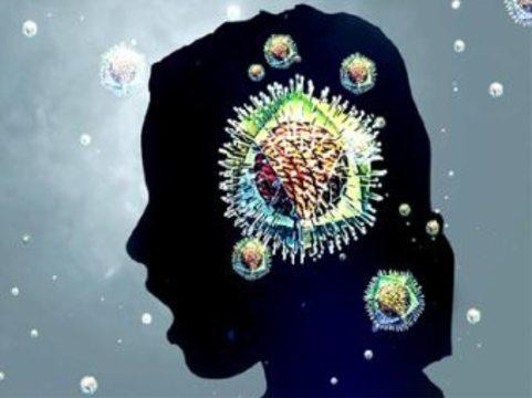 Пять процентов россиян [переболели гриппом H1N1]