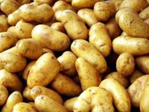 Картофель оказался [самым дешевым и полезным из овощей]