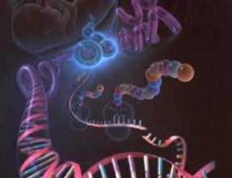 """Ученые намерены осуществить проект """"Геном рака"""""""