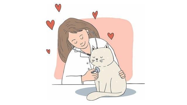 Российские ученые разрабатывают вакцину от COVID-19 для кошек и норок