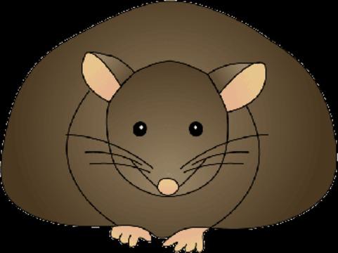 [Трансплантация бурого жира] способствовала снижению веса у мышей