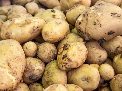 Не стоит есть много картофеля во время беременности
