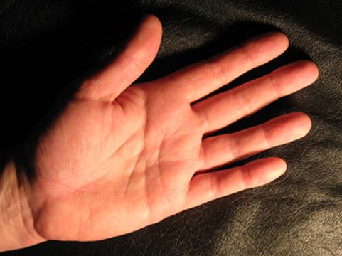 Риск рака простаты [зависит от длины пальцев]