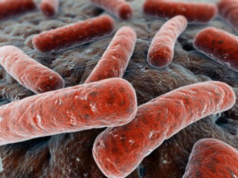 Предложена [эффективная и дешевая схема лечения всех форм туберкулеза]
