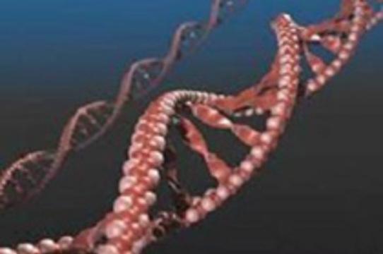 Взломанные гены