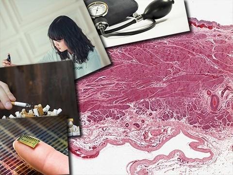 Виртуальная микроскопия, курение и рак
