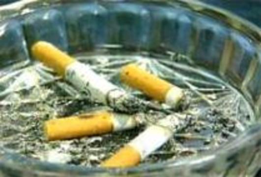 Шведам запретили курить в ресторанах