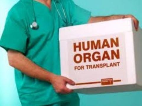 Трансплантация органов [повышает риск развития 32 видов рака]