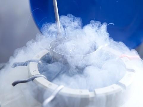 Заморожены яйцеклетки двухлетней девочки, страдающей раком