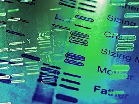 Эффективность лечения предложили прогнозировать по ДНК пациента