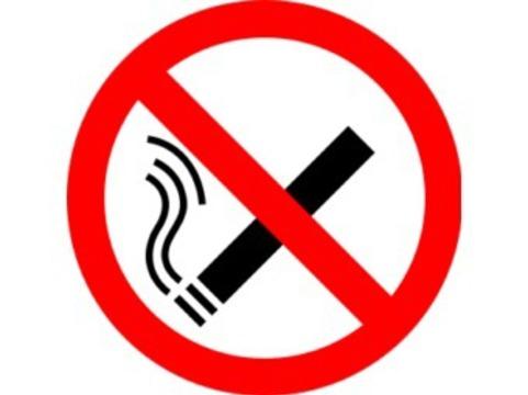Правительство обнародовало [список запретных для курения мест]