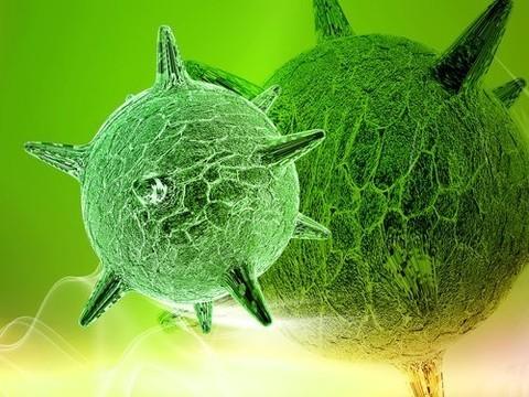 Вирус герпеса успешно применили для лечения рака кожи