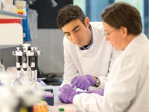 Ученые нашли [эффективный подход к лечению рака]