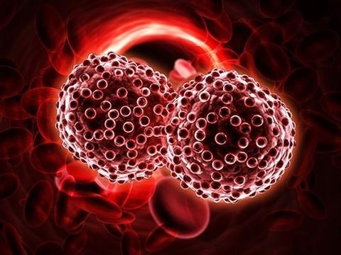 «Рассчитывать на то, что можно решить проблему онкологии диспансеризацией, очень наивно»