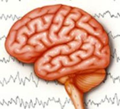 Ученые нашли ген эпилепсии