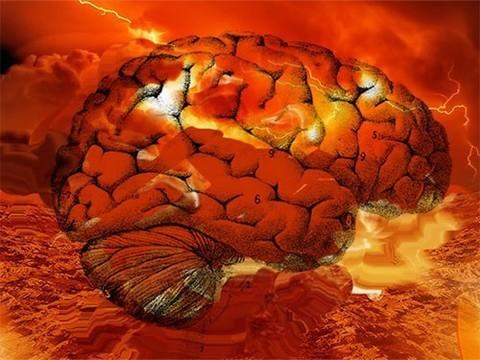 """Доказано наукой: от сильной жары """"плавится мозг"""""""