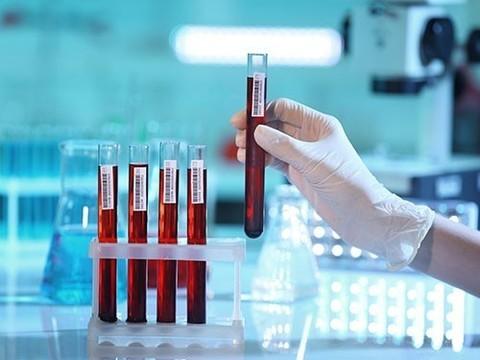 Общий анализ крови: что это и зачем он нужен?