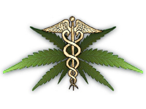 Законодатели Нью-Джерси [одобрили медицинское применение марихуаны]