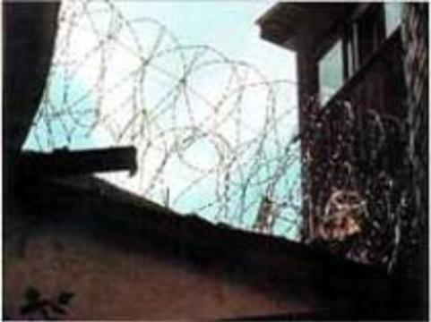 Минюст: больше полмиллиона российских заключённых больны