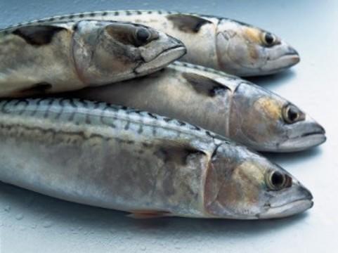 Масштабное исследование доказало [связь рыбы в рационе с долголетием]