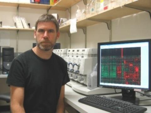 Расшифрован геном [самой агрессивной опухоли мозга]