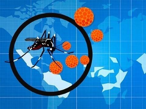 В США расследуют странный случай заражения пациента вирусом Зика