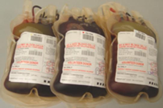 Гомосексуалисты требуют разрешить им быть [донорами крови]