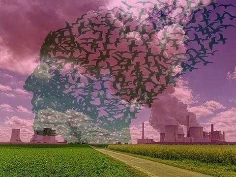 Легкое загрязнение воздуха может увеличивать риск деменции при болезнях сердца