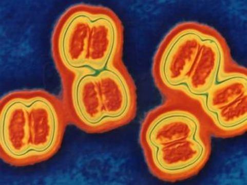 В Башкирии зафиксирована вспышка менингококковой инфекции [среди гастарбайтеров]