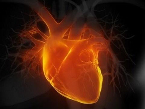 В Европе оценят эффективность [терапии инфаркта стволовыми клетками]