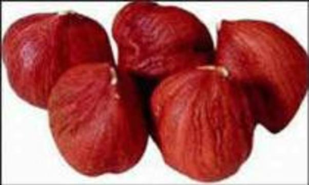 В орехах найдено лекарство против рака