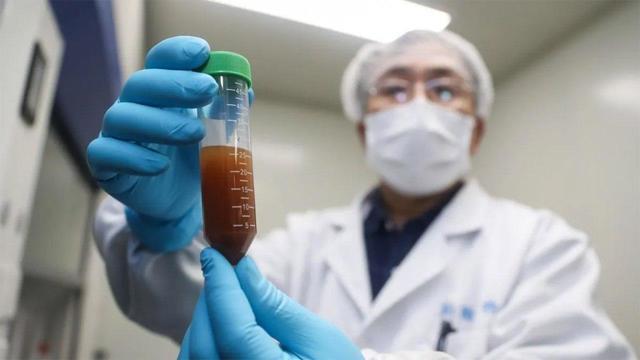 Китайская векторная вакцина от COVID-19 показала низкую эффективность у пожилых людей