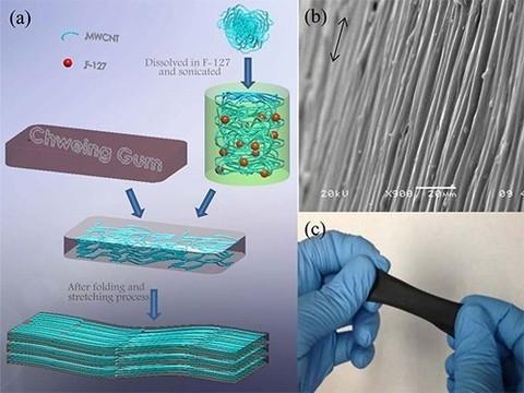Создан биосенсор на основе жвачки