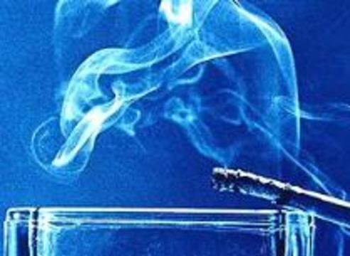 Ментоловые сигареты проверят на вредность