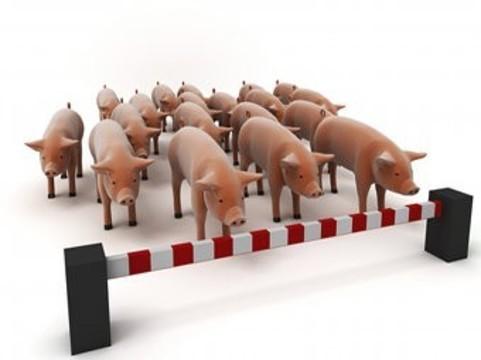 В Амурской области зарегистрированы [три случая свиного гриппа]