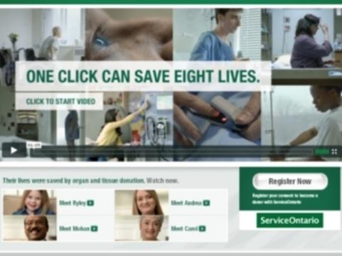 Сайт для доноров органов [не выдержал наплыва посетителей]