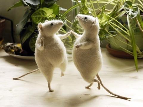 Ученый из Канады призвал коллег проводить исследования на мышах обоих полов