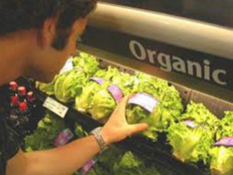 Преимущества органических продуктов питания [поставлены под сомнение]