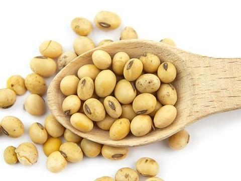 Соевые продукты защитят от остеопороза при менопаузе