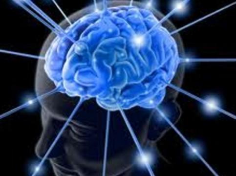 """Американским ученым удалось выделить [""""нейронные слепки"""" воспоминаний]"""