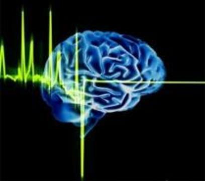 Поврежденный мозг можно будет вырастить заново