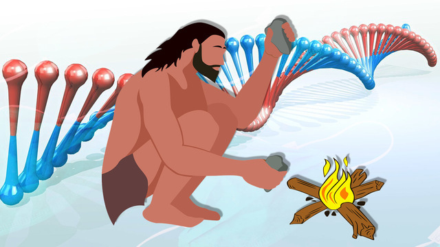 Гены тяжелого течения COVID-19 мы унаследовали от неандертальцев – исследование