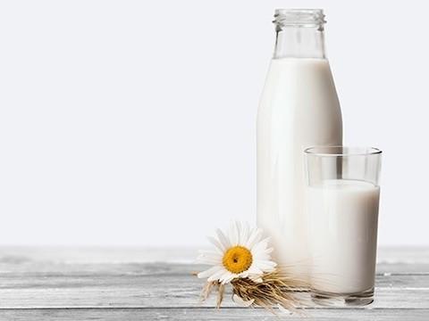 Обнаружены различия в составе органического и «неорганического» молока