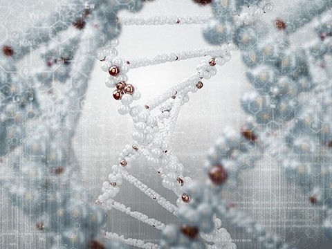 Обнаружен ген седины